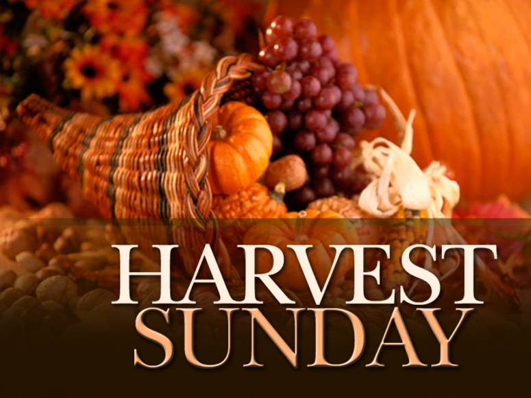 Harvest Sunday_0.jpg